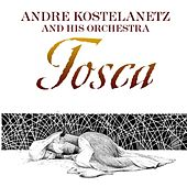 Tosca de Andre Kostelanetz And His Orchestra