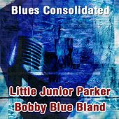 Blues Consolidated de Various Artists
