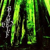 Hex by Bigelf
