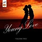 Young Love, Vol. 2 de Various Artists