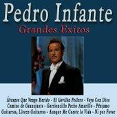 Grandes Éxitos de Pedro Infante van Pedro Infante