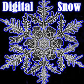 Digital Snow by Various Artists