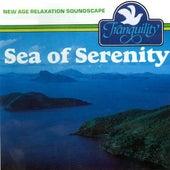 Sea of Serenity by Anton Hughes
