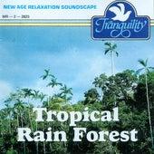 Tropical Rain Forest by Anton Hughes
