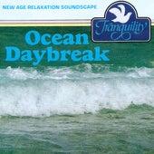 Ocean Daybreak by Anton Hughes