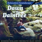 Dawn in the Daintree by Anton Hughes
