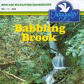 Babbling Brook by Anton Hughes