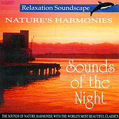 Sounds of the Night by Anton Hughes