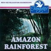 Amazon Rainforest by Anton Hughes