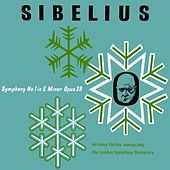 Sibelius Symphony No 1 In E Minor de Anthony Collins