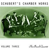 Schubert's Chamber Works Volume 3 de Busch Quartet