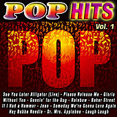 Pop Hits Vol. 1 by Various Artists