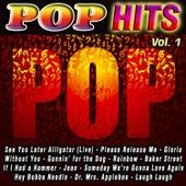 Pop Hits Vol. 1 de Various Artists