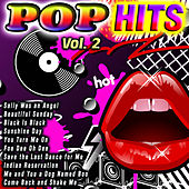 Pop Hits Vol. 2 by Various Artists