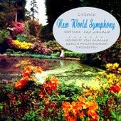 New World Symphony von Berlin Philharmonic Orchestra