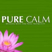 Pure Calm de Various Artists
