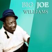 Big Joe Williams' Greatest Hits de Big Joe Williams