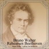 Bruno Walter Rehearses Beethoven de Bruno Walter
