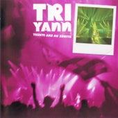 Tri Yann Trente ans au Zénith (Live) de Tri Yann