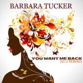 You Want Me Back (Paolo Madzone Zampetti & Friends 2012 Remixes) by Barbara Tucker