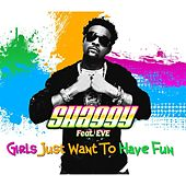 Girls Just Want to Have Fun von Shaggy