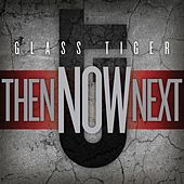 Then...NOW...Next de Glass Tiger