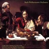 J.S. Bach: Violin Concertos & Air On the G String - Vivaldi: the Four Seasons  - Pachelbel: Canon in D Major - Albinoni: Adagio - Mozart: Sonata Facile - Walter Rinaldi: Orchestral Works by Bach Philharmonic Orchestra