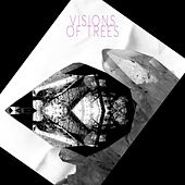Visions Of Trees by Visions of Trees