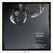 Twilight Sleep Remix EP by Kriece