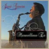 Maravilloso Es by Jose Garcia