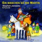 Ein bisschen so wie Martin - Lieder zum Laternenfest & Sankt Martin by Various Artists