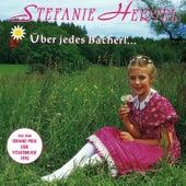Über jedes Bacherl geht a Brückerl by Stefanie Hertel