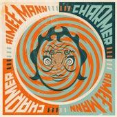 Charmer by Aimee Mann