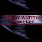 Newport Live von Muddy Waters