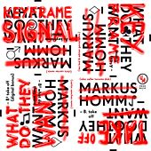 What Do They Want / Remixes by Markus Homm