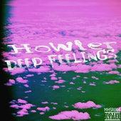 Deep Feelings de Howler