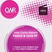 Peace & Love de Juan Carlos Herrera