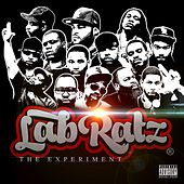 The Experiment de Labratz