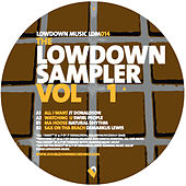 The Lowdown Sampler Vol 1 by Various Artists