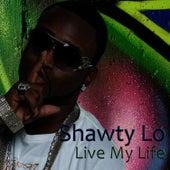 Live My Life de Shawty Lo