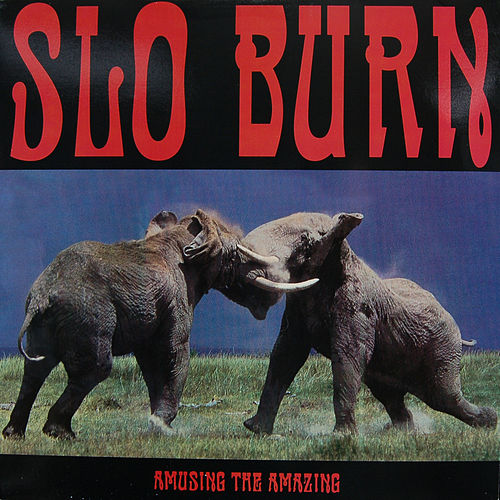 Amusing The Amazing by Slo Burn