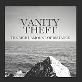 The Right Amount of Distance by Vanity Theft