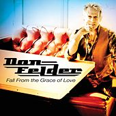 Fall From the Grace of Love - Single von Don Felder