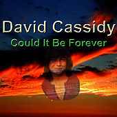 Could It Be Forever by David Cassidy