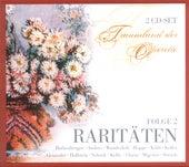 Traumland der Operette - Raritäten (Folge 2) von Various Artists