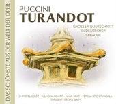 Turandot de Various Artists