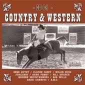 Country Hits Vol. 4 de Various Artists