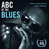 ABC Of The Blues Vol 49 von Various Artists