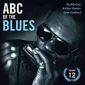 ABC Of The Blues Vol 12 by Various Artists