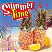 Summertime von Various Artists